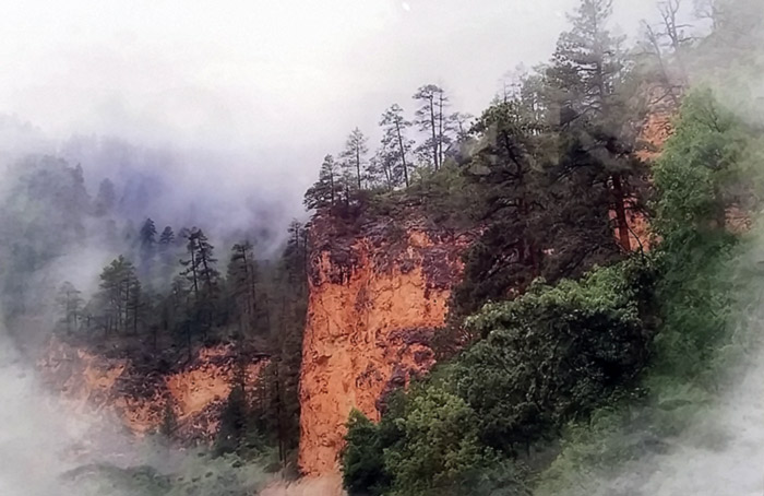 """Fog in the Canyon,"" Metal Print by Dan Contonis"