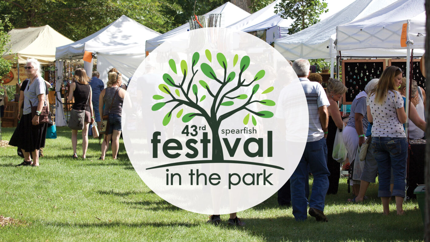 43rd Festival in the Park